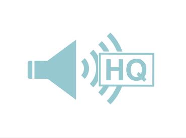高品質な音声 精細な資料を表示可能